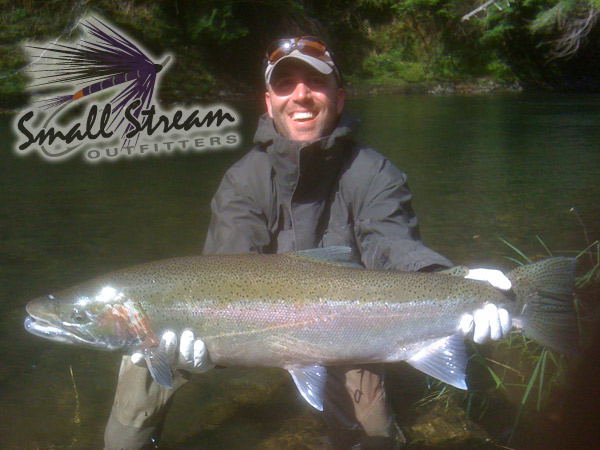steelhead on a swung fly